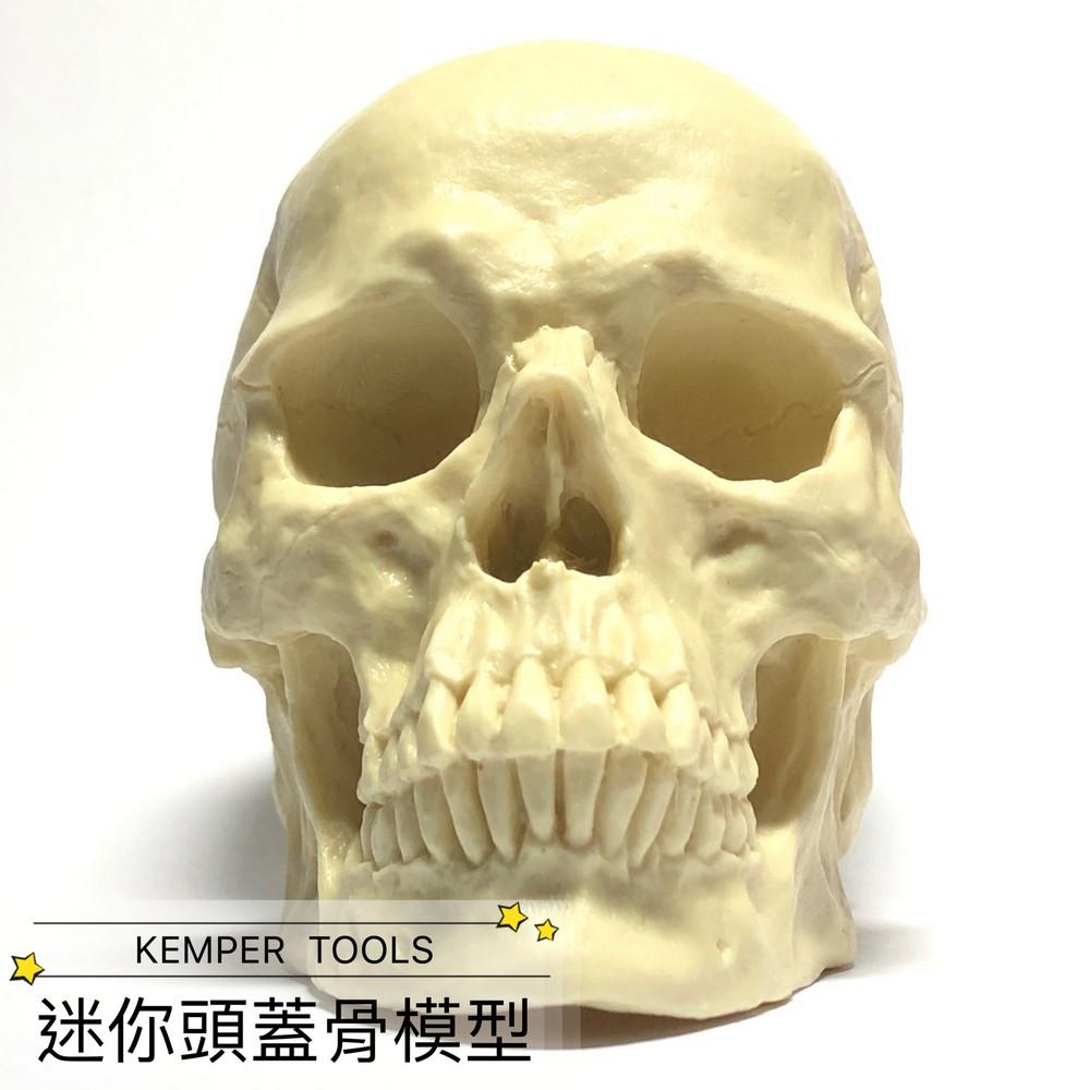 片桐裕司●迷你頭蓋骨模型